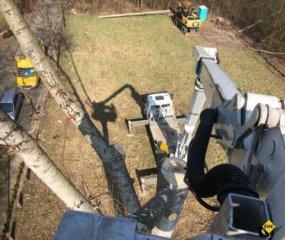 Podnosnik koszowy do wycinki drzew