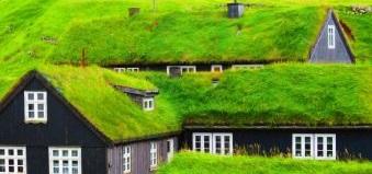 Zielony dach - ekologiczne rozwiązanie dla twojego domu